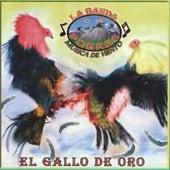 El Gallo De Oro by La Banda De Los Pobres Musica De Viento
