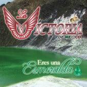 Play & Download Eres Una Esmeralda by La Victoria de Mexico | Napster