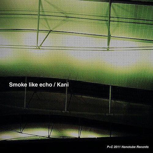 Smoke Like Echo by Kani
