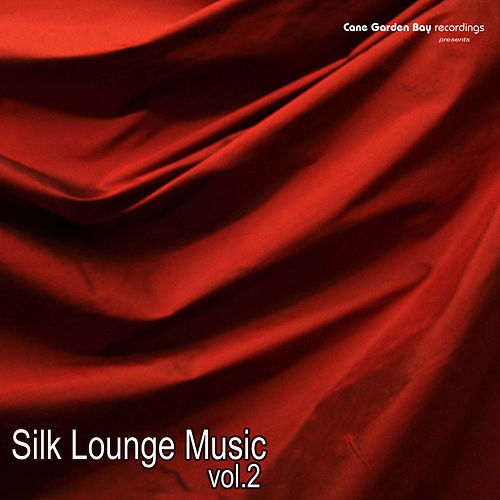 Silk Lounge Music Vol.2 by Various Artists