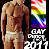 Play & Download Gay Dance & House 2011 by Various Artists | Napster
