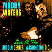 Play & Download Live At The Lincoln Center, Washinton D.C. by Muddy Waters | Napster