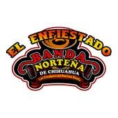 El Enfiestado - Single by Banda Norteña