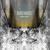 Play & Download Shangri-La Indeed by Black Whales | Napster