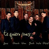 Play & Download Te Quiero Mas by Novillos Musical | Napster