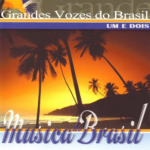 Play & Download Grandes Vozes do Brasil. Um e Dois by Various Artists | Napster