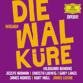 Play & Download Wagner: Die Walküre by Various Artists | Napster