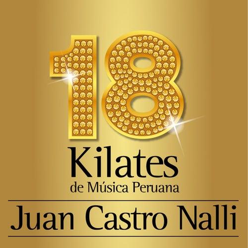 Play & Download 18 Kilates de Musica Peruana by Juan Castro Nalli Orquestra | Napster
