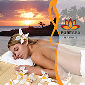Play & Download Pure Spa Hawaii by Makana | Napster