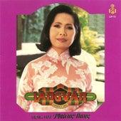 Nua Dem Ngoai Pho by Phuong Dung