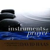 Play & Download Instruments at Prayer, Vol. 2 by David Haas | Napster