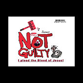 Not Guilty by The James'