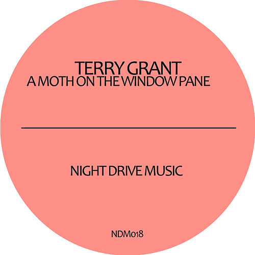 Play & Download A Moth On The Window Pane EP by Terry Grant | Napster