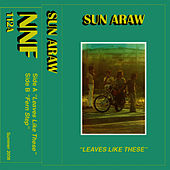 Leaves Like These by Sun Araw
