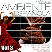 Play & Download Musica Ambiente Española .Flauta, Guitarra y Compas Flamenco. Vol 3 by Diego Carrasco | Napster