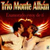 Enamorado Estoy De Ti by Trio Montealban