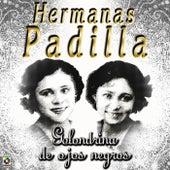 Play & Download Golondrina De Ojos Negros by Las Hermanas Padilla | Napster