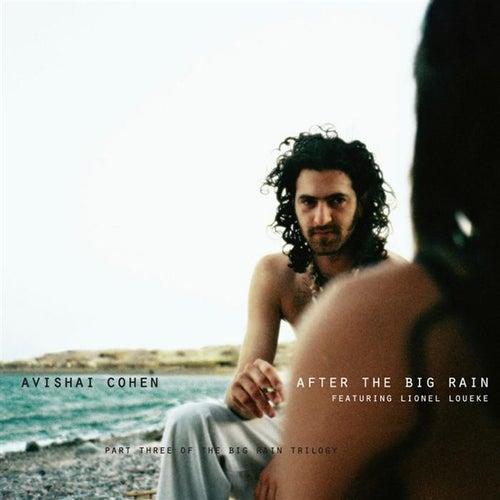 After the Big Rain by Avishai Cohen (bass)