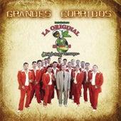 Play & Download Grandes Corridos by La Arrolladora Banda El Limon | Napster