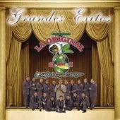 Play & Download Grandes Exitos by La Arrolladora Banda El Limon | Napster