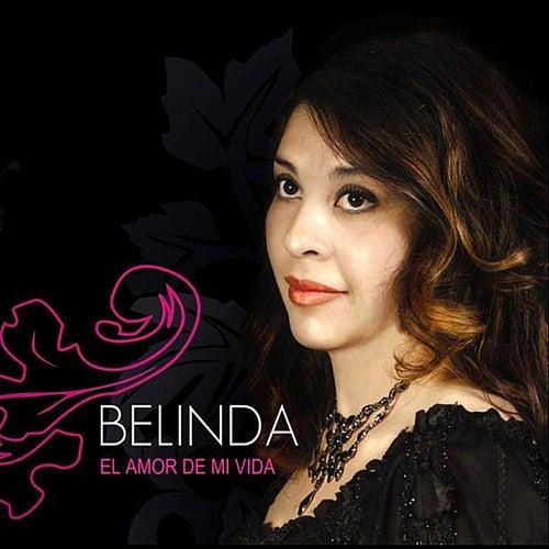 Play & Download El Amor de mi Vida by Belinda (2) | Napster