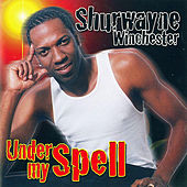 Play & Download Under My Spell by Shurwayne Winchester | Napster