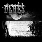 Play & Download Swamp Music by Armadillo Blues | Napster