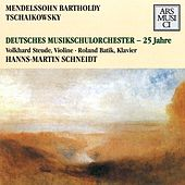 Play & Download Mendelssohn: Concerto for Violin and Piano in D minor - Tchaikovsky: Souvenir de Florence by Hanns-Martin Schneidt | Napster