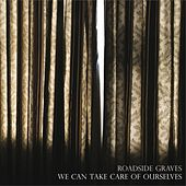 Play & Download We Can Take Care of Ourselves by The Roadside Graves | Napster