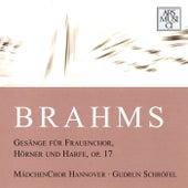 Play & Download Brahms: Gesange fur Frauenchor, Horner und Harfe, Op. 17 by Various Artists | Napster