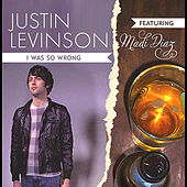 I Was So Wrong (feat. Madi Diaz) by Justin Levinson