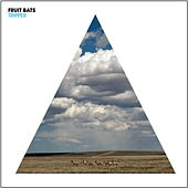 Tripper by Fruit Bats