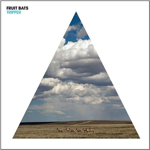 Play & Download Tripper by Fruit Bats | Napster