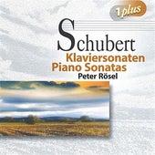 Schubert: Piano Sonatas by Peter Rosel