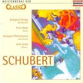 Classic Masterworks - Franz Schubert von Various Artists