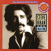 The Collection by Steve Khan
