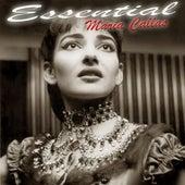 Play & Download Essential Maria Callas by Maria Callas | Napster