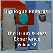 Play & Download The Drum & Bass Experience Volume 2 by Various Artists | Napster