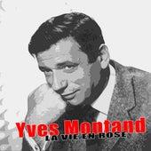La Vie En Rose by Yves Montand