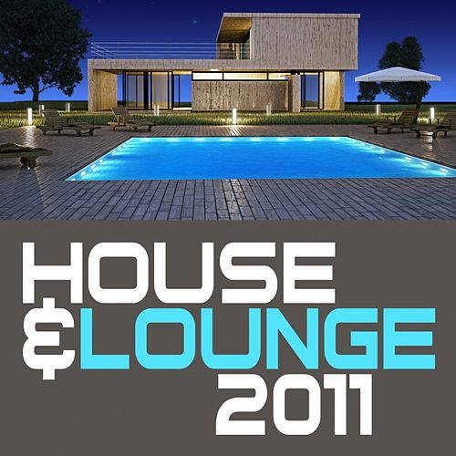 House & Lounge 2011 by Various Artists