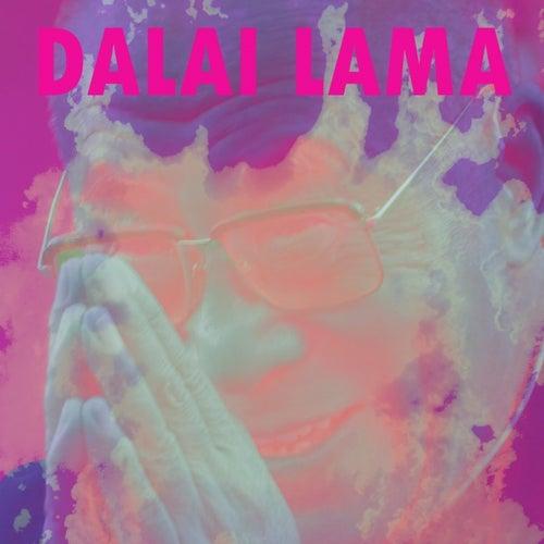 Dalai Lama by Dalai Lama