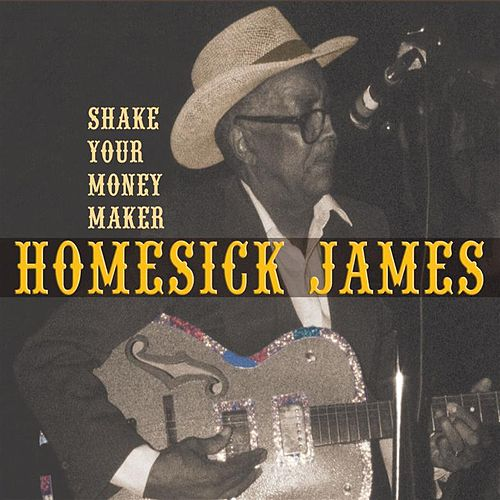 Shake Your Money Maker by Homesick James