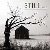 Still Volume 2 by Various Artists
