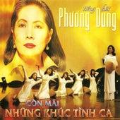 Con Mai Nhung Khuc Tinh Ca by Phuong Dung