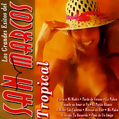 Play & Download Los Grandes Exitos Del by San Marcos Tropical | Napster