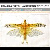 Deadly Buzz | Aoibhinn Crónán by Mick O'Brien