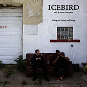 Play & Download Going and Going. and Going. (Feat. rjd2 & Aaron Livingston) by Icebird | Napster