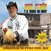 Play & Download Corridos De Puro Pico…Eso! by Juan Acuña | Napster