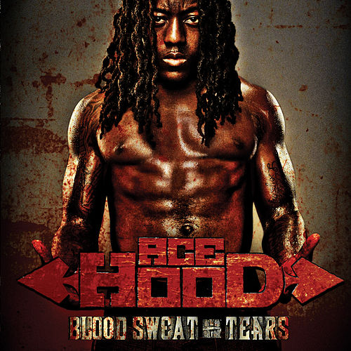Play & Download Blood Sweat & Tears by Ace Hood | Napster