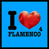 I Love Flamenco Vol.4 by Various Artists